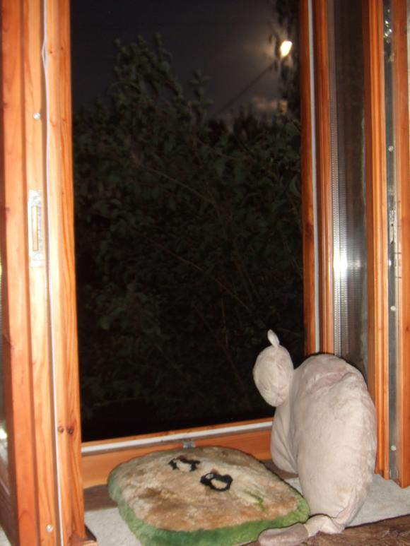 http://mon-neurone-fou.cowblog.fr/images/DSCF2989.jpg